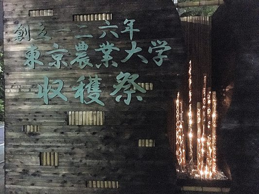 東京農業大学 農大 収穫祭 学園祭 学祭 大根踊り 世田谷 経堂 空飛ぶPマン