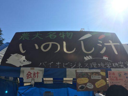 いのしし汁 猪 ジビエ 東京農業大学 農大 収穫祭 学園祭 学祭 大根踊り 世田谷 経堂 空飛ぶPマン